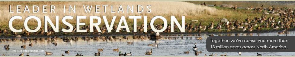 Ducks Unlimited: Leader in Wetlands Conservation