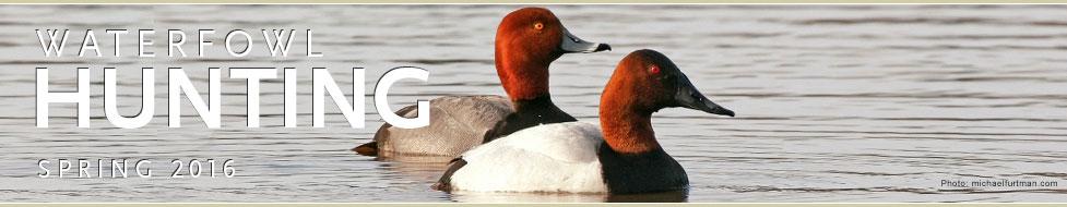 Ducks Unlimited: Waterfowl Hunting Headquarters